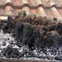 Professional, tar and chimney sweep London